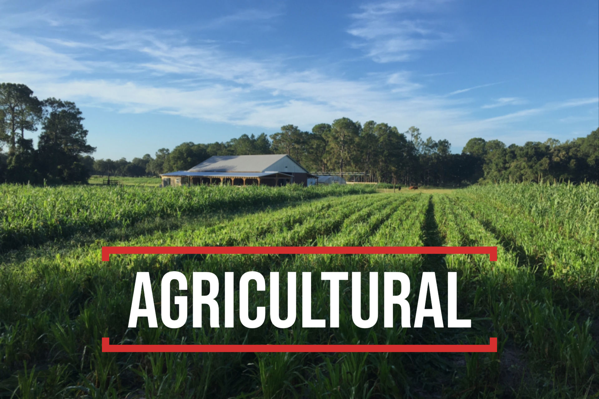 Agriculture For Sale – St. Pete