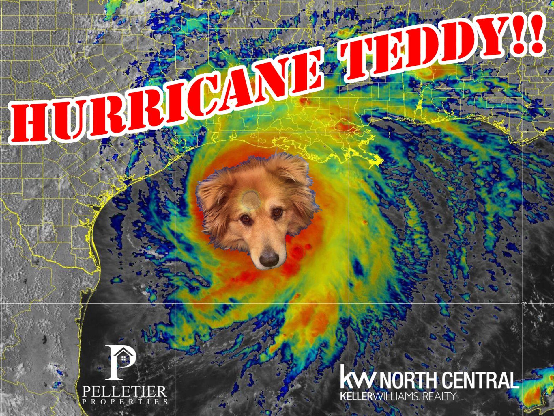HURRICANE TEDDIE TO STIR UP REAL ESTATE MARKET IN MASSCHUSETTS!