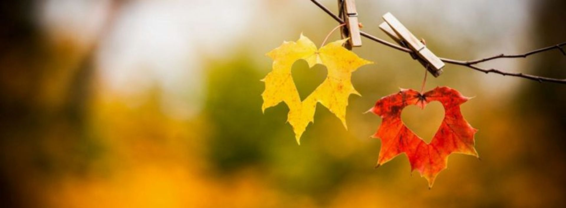 FALL IN LOVE WITH SELLING YOUR HOME THIS SEASON!