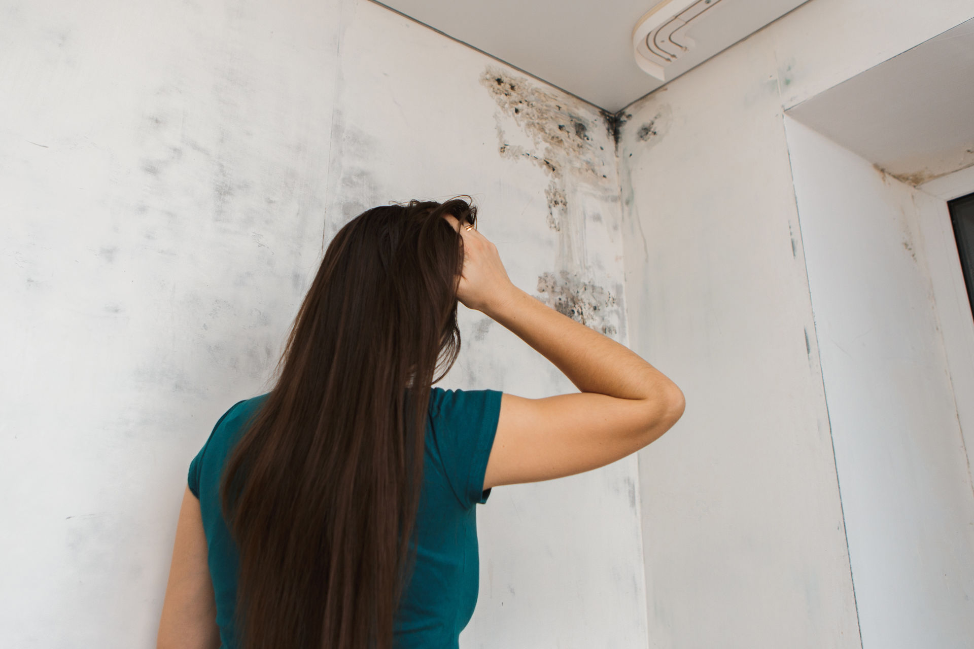 This Mold House — What Is a Stigmatized Home?
