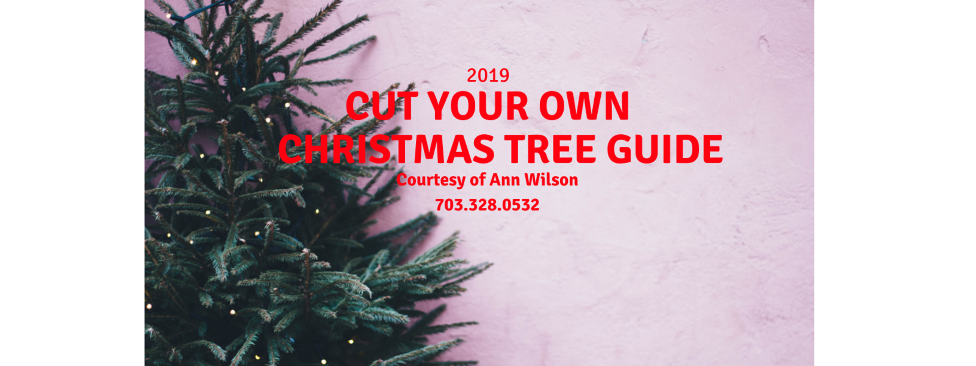 2019 Cut Your Own Christmas Tree Guide