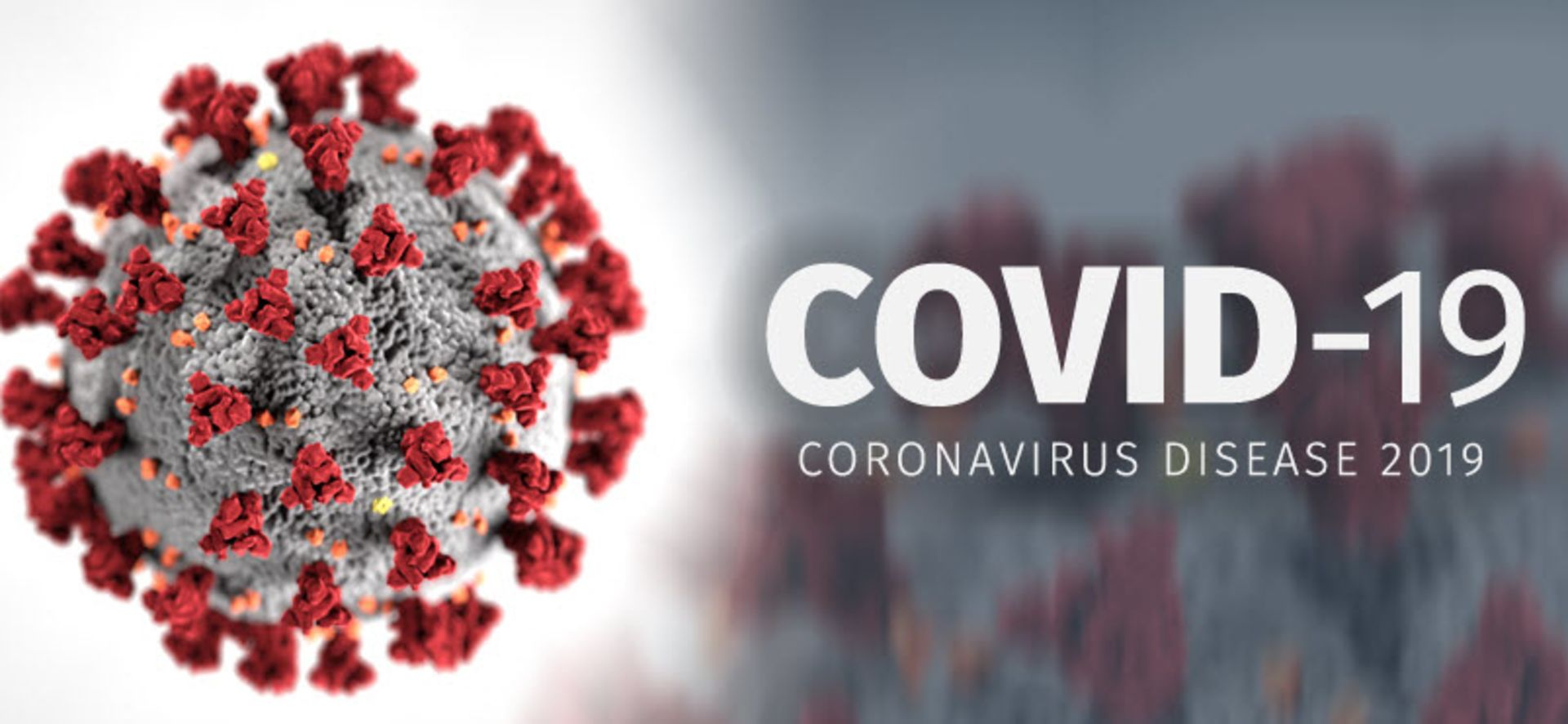 How to Kill the New Coronavirus: When You're Home…When You're Out