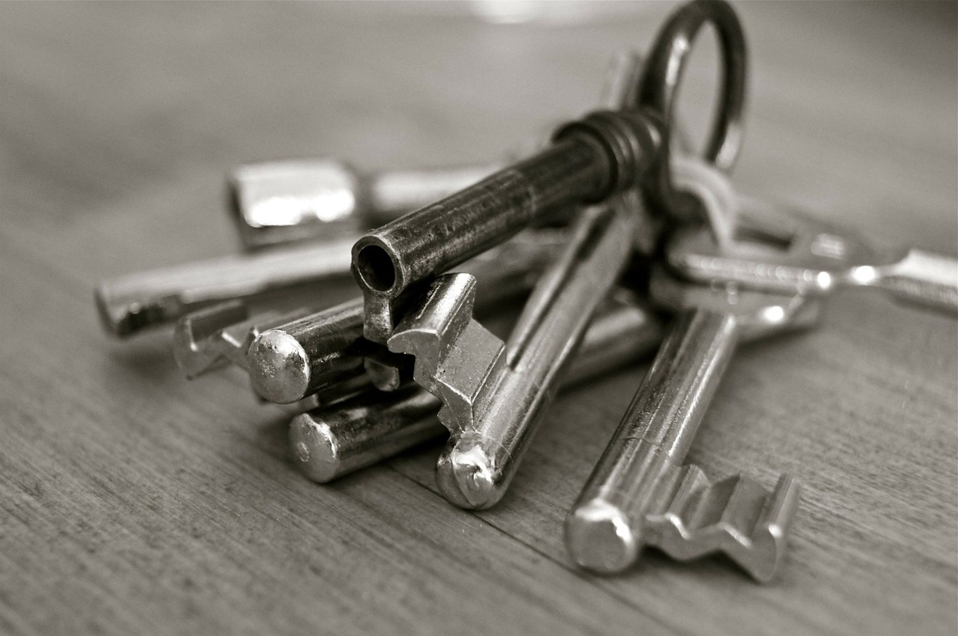 Unlocking the Keys to Property Investment: 4 Reasons You Might Want to Invest