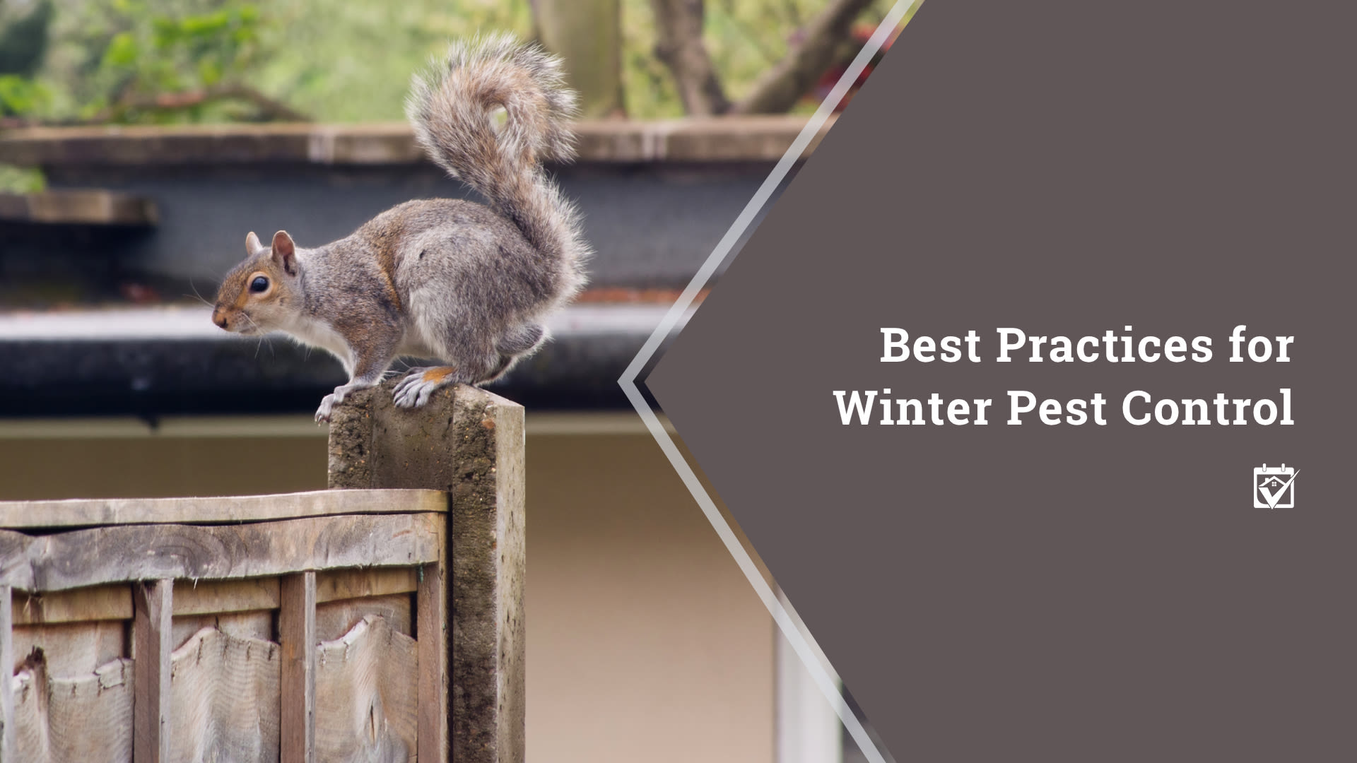 Keeping Unwanted Pests Out During the Colder Months