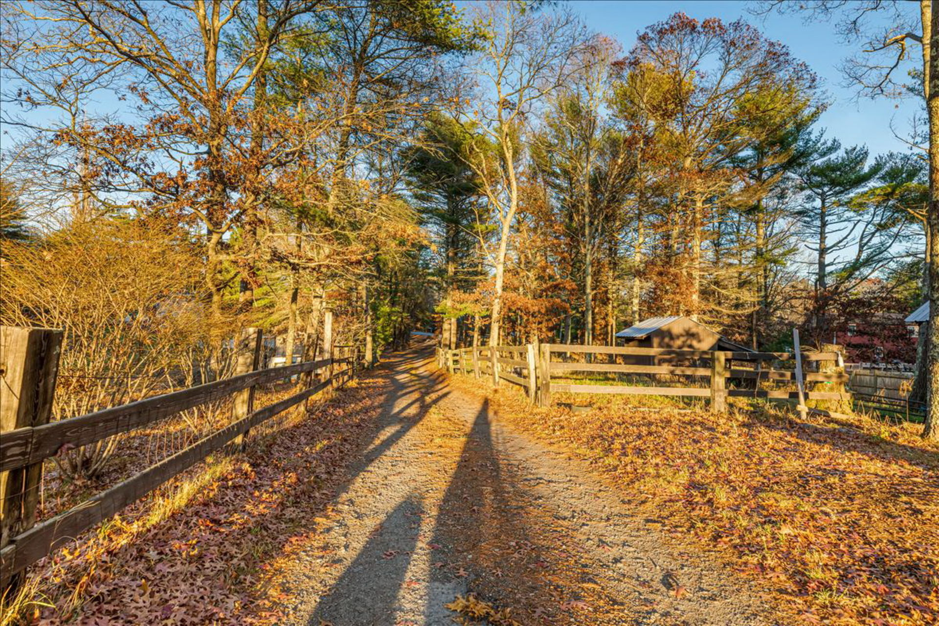 Carver home & horse farm on 6 acres