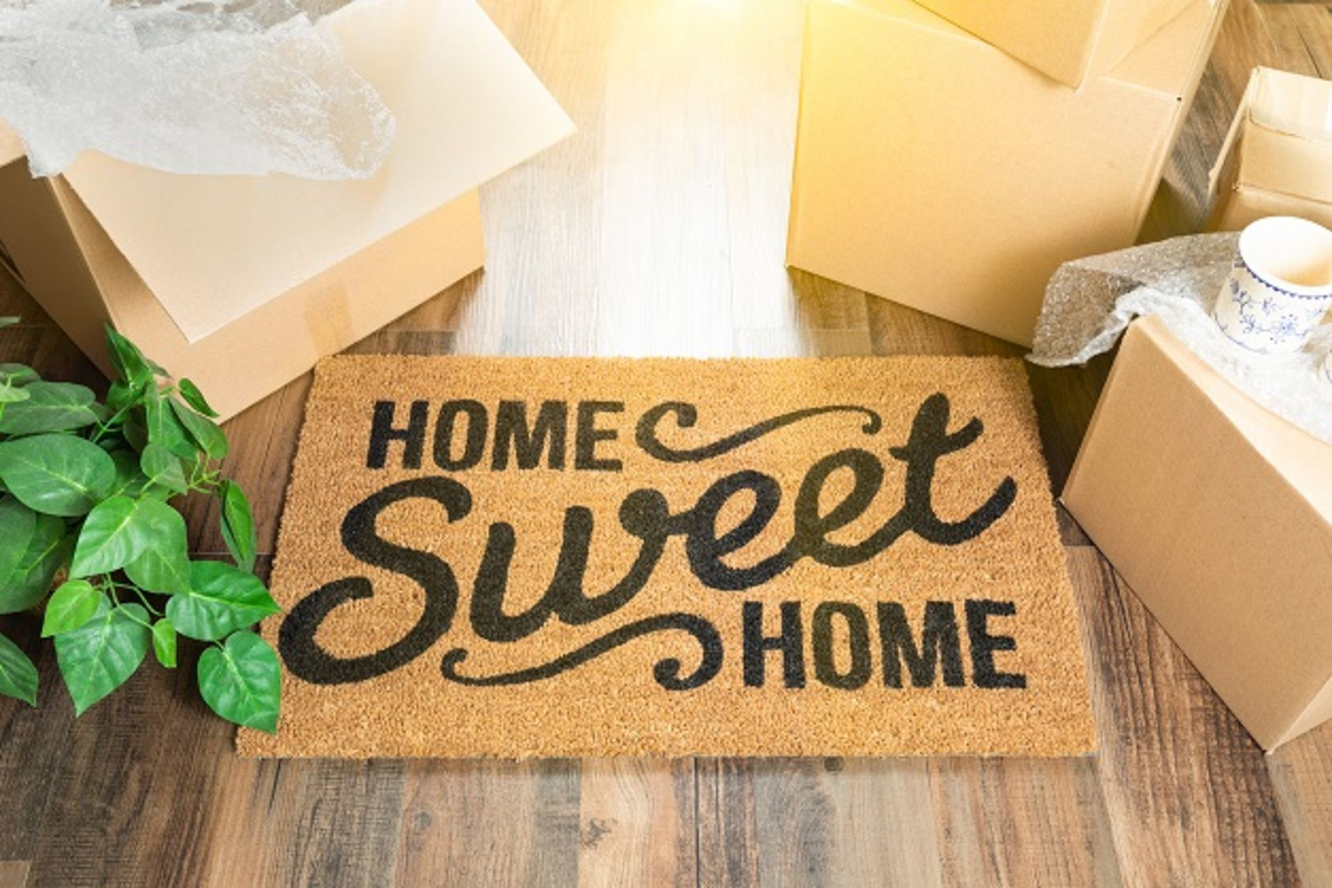 Why You Should Be Buying a Home NOW!