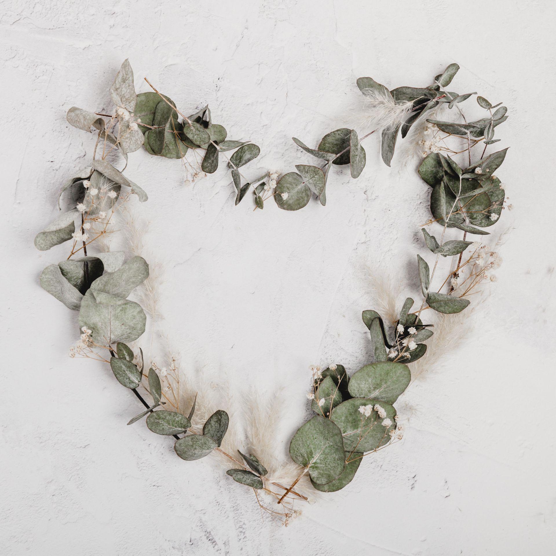 Our Valentine Favorites