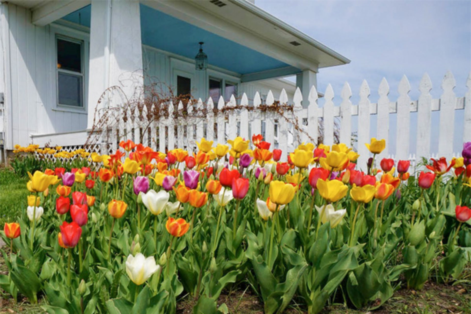 5 Great Projects for Selling in Spring