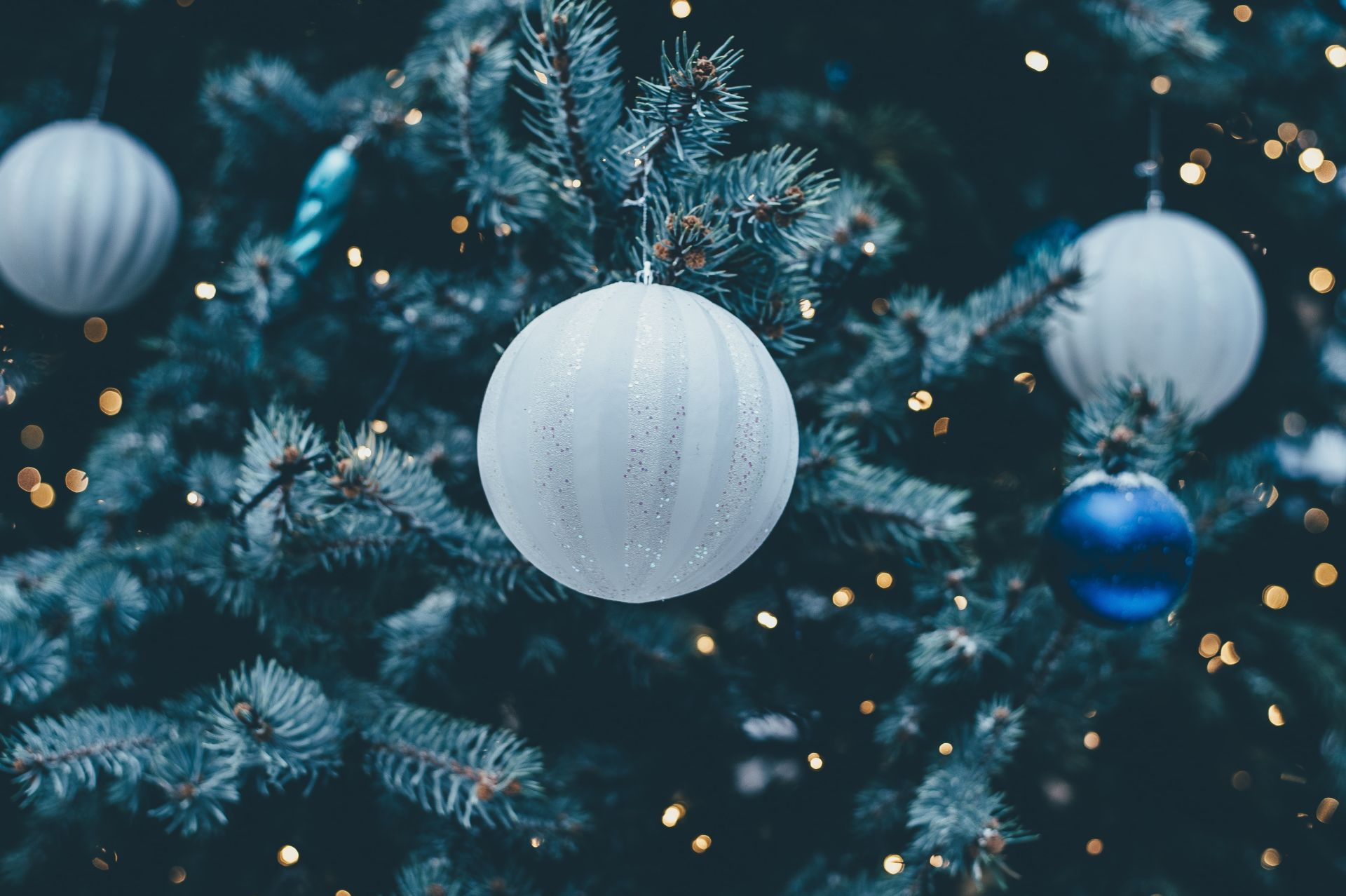 Fun, festive and socially-distanced activities to do in winter this year