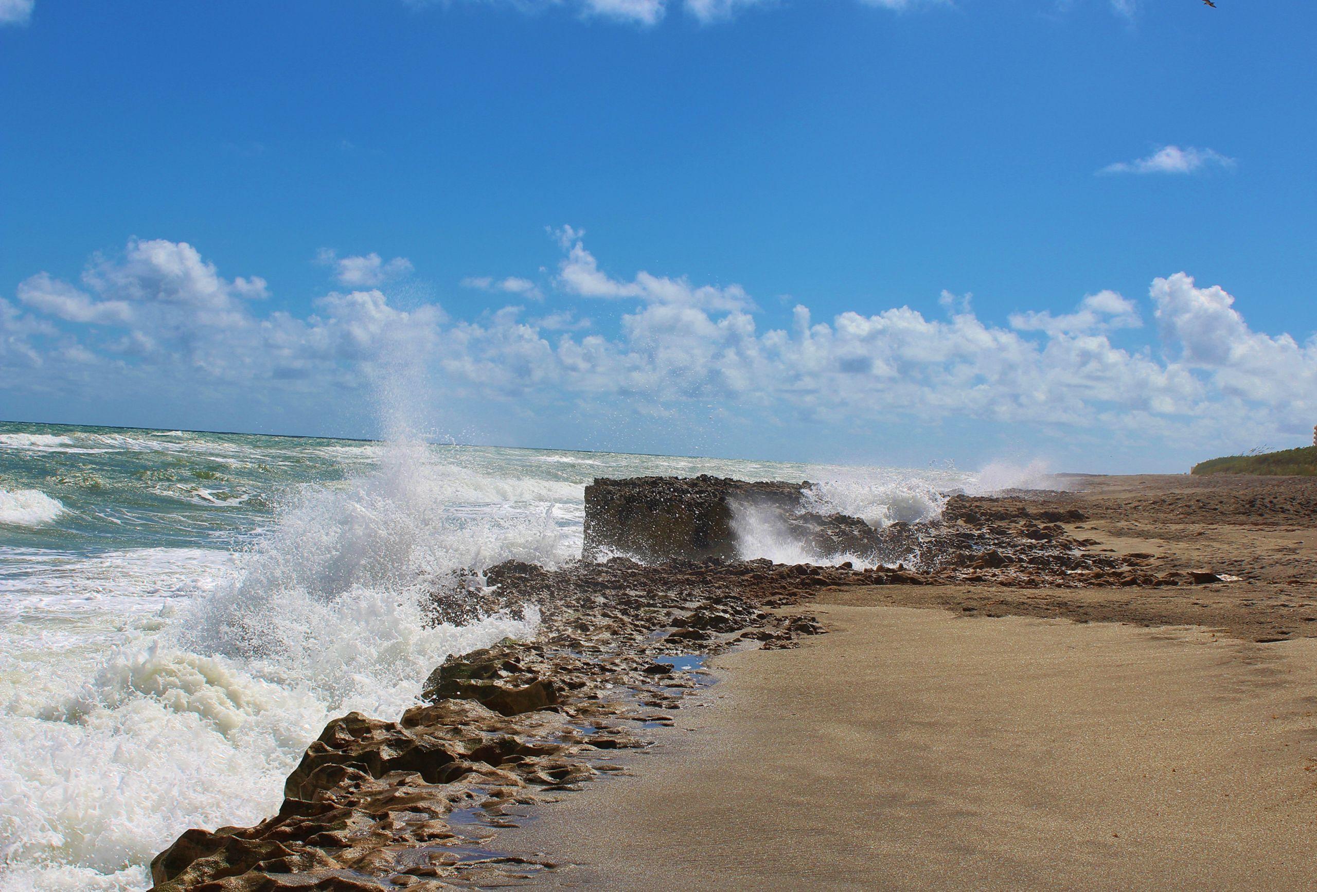 DIVERSE BEACH LANDSCAPES