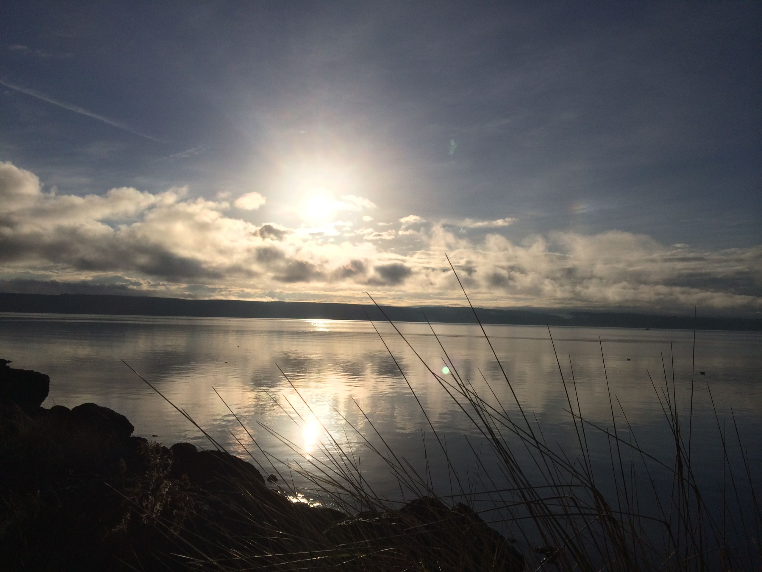 Hood Canal Morning