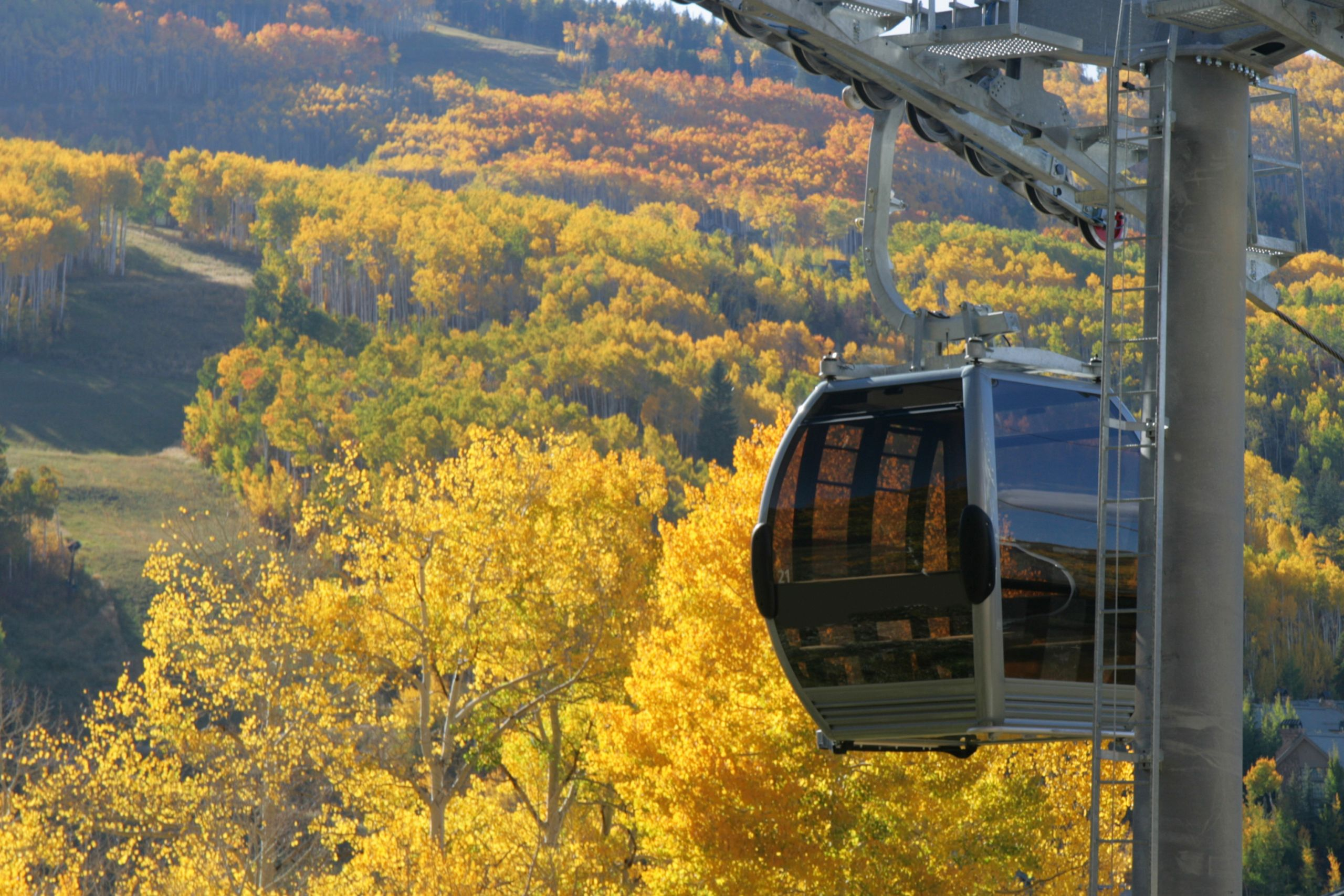 Enjoy the fall colors in Vail