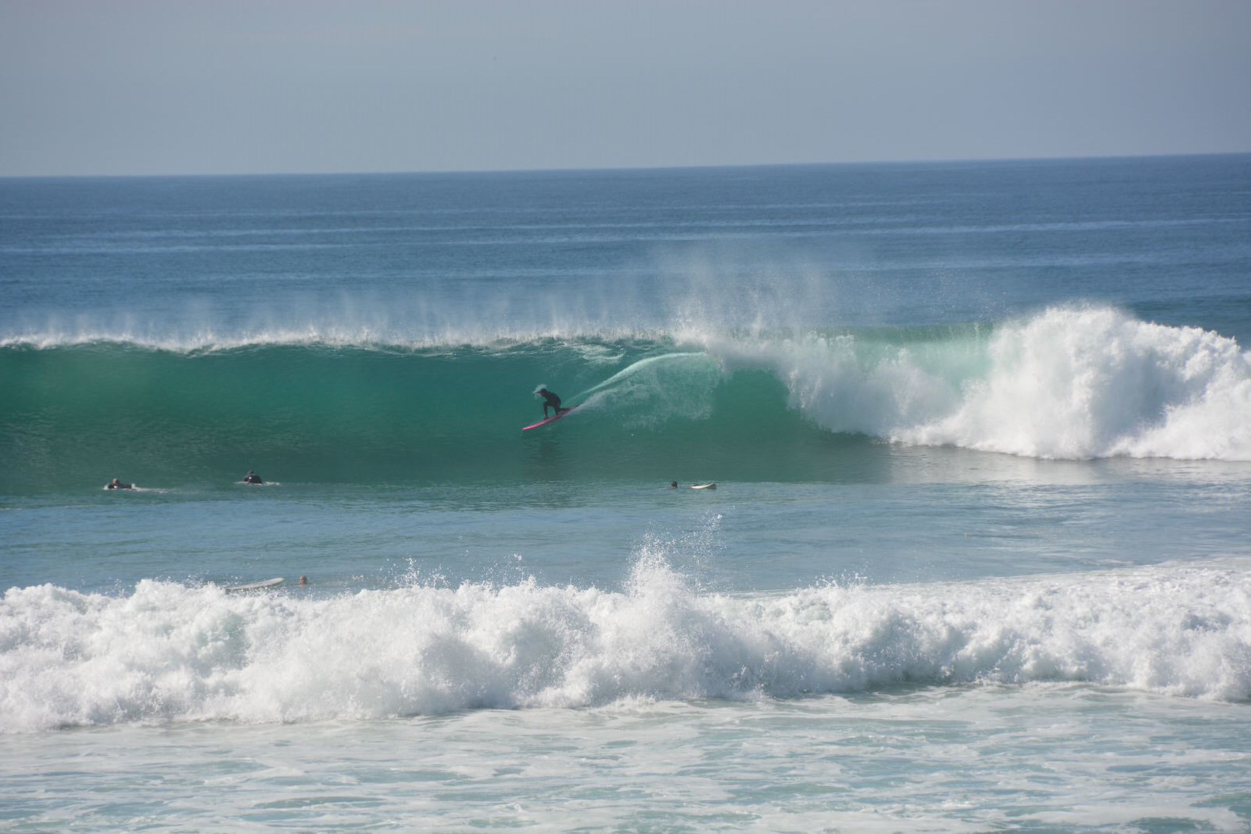 Swamis in Encinitas