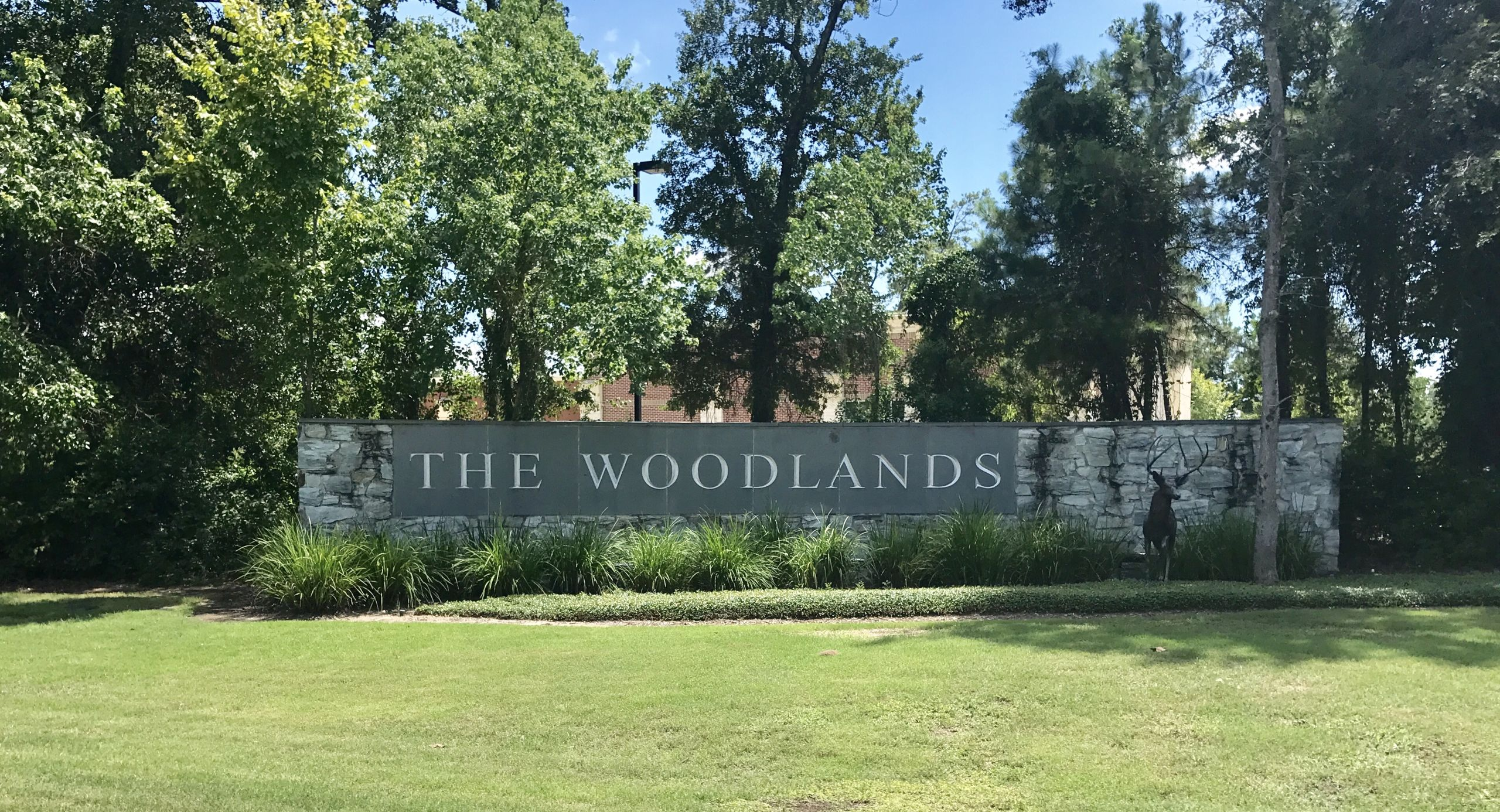 Welcome to The Woodlands!