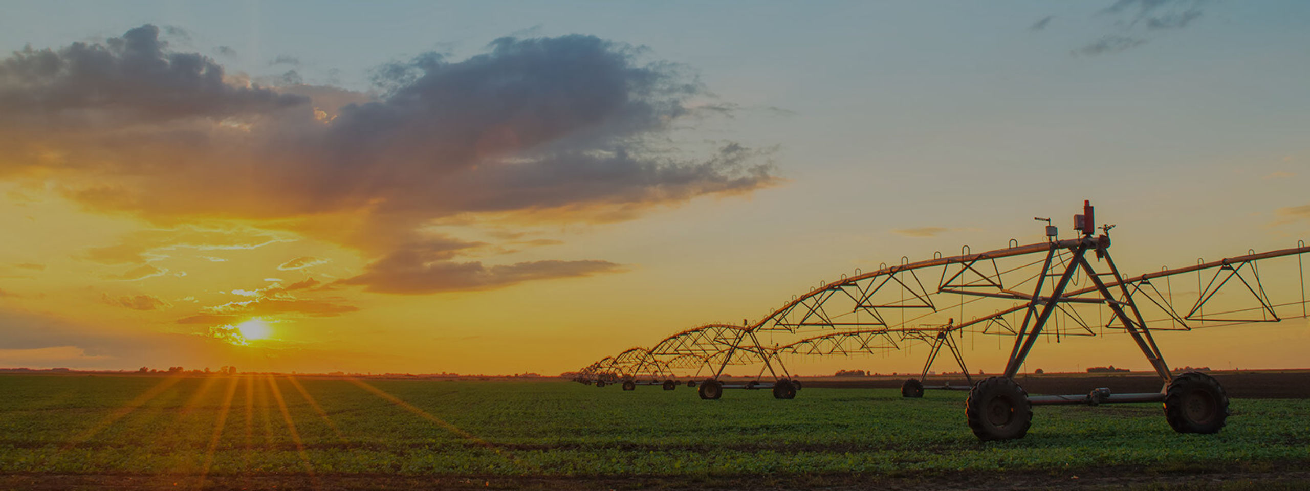 Irrigated Farms