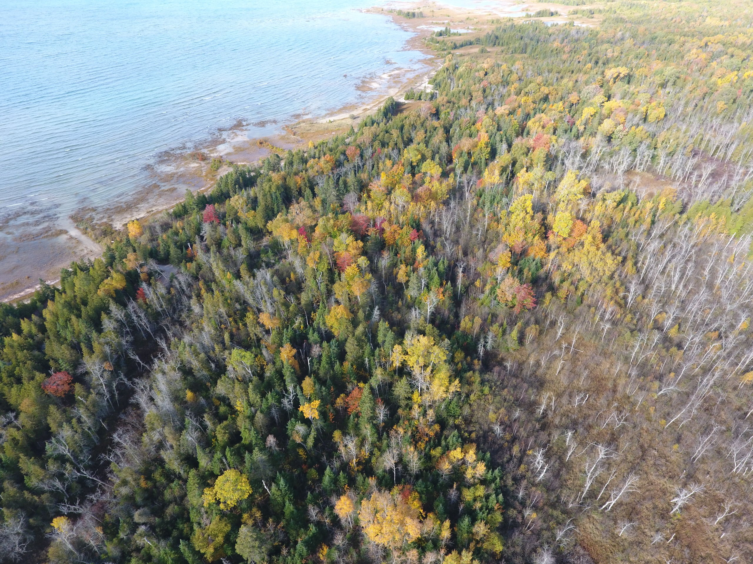 Lake Michigan State park Shoreline