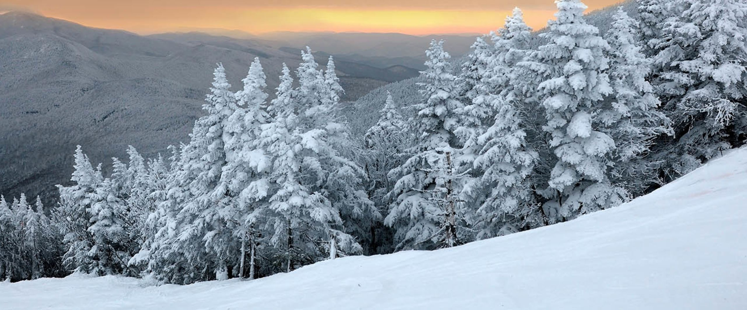Peaceful Winter Views