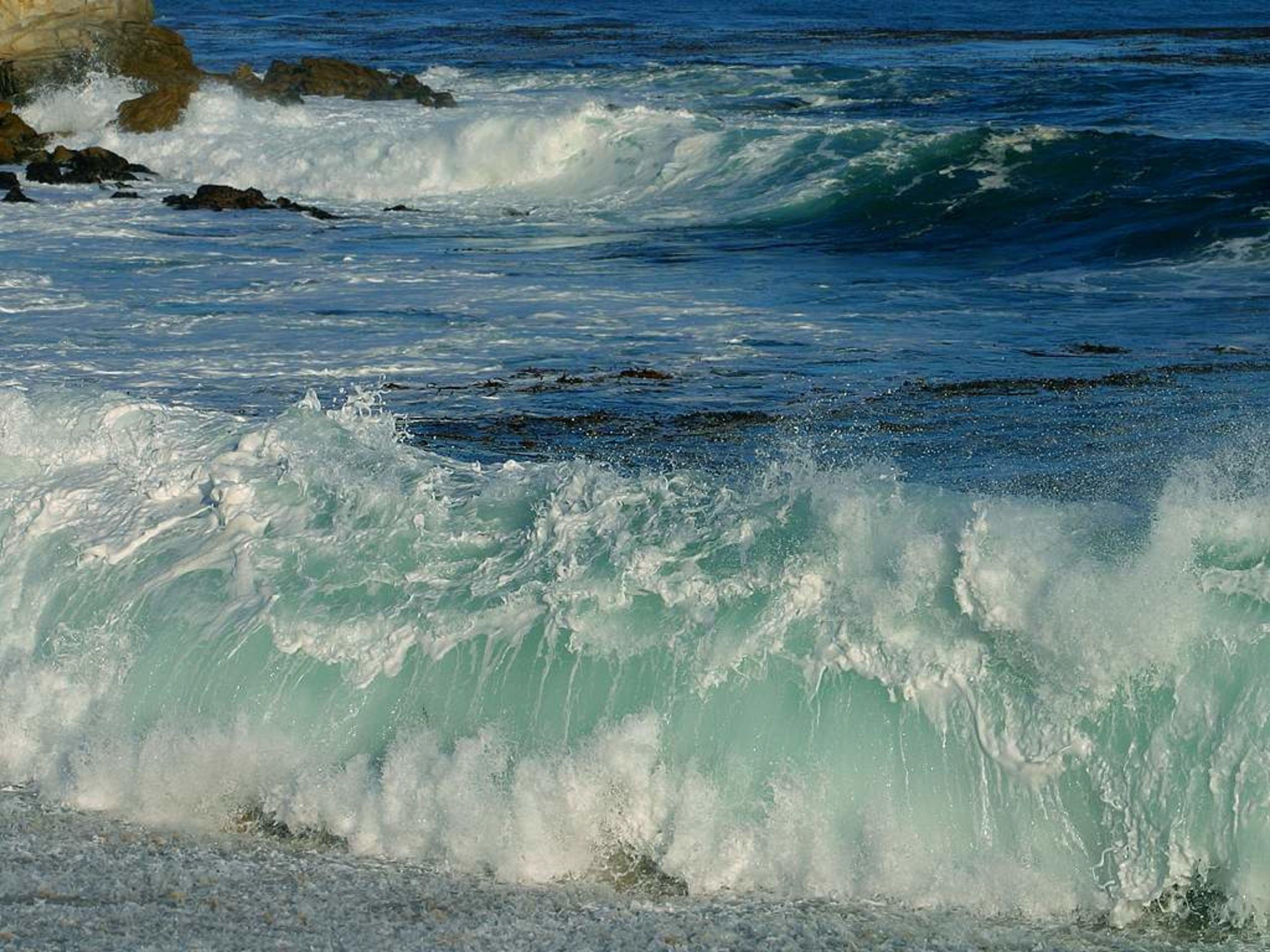 Salt Creek Beach Surf