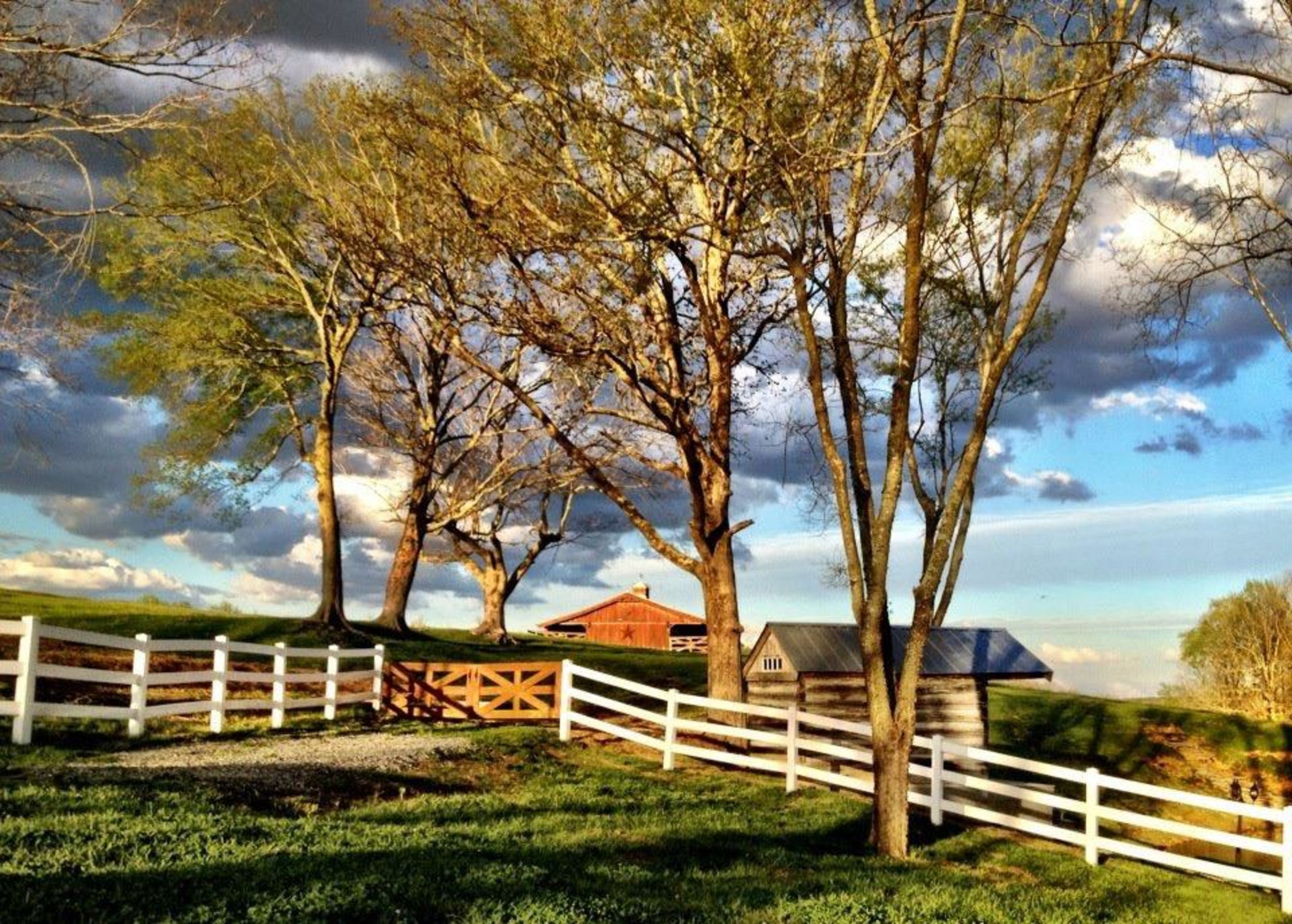 Country living in Fairview, TN!