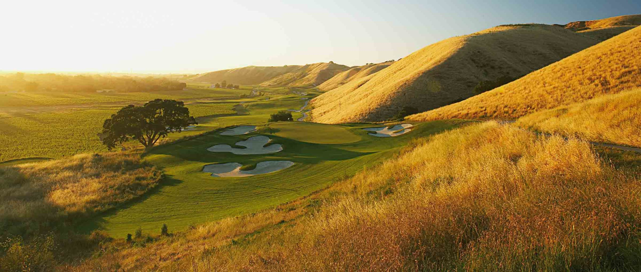 Wente Golf Course Livermore California