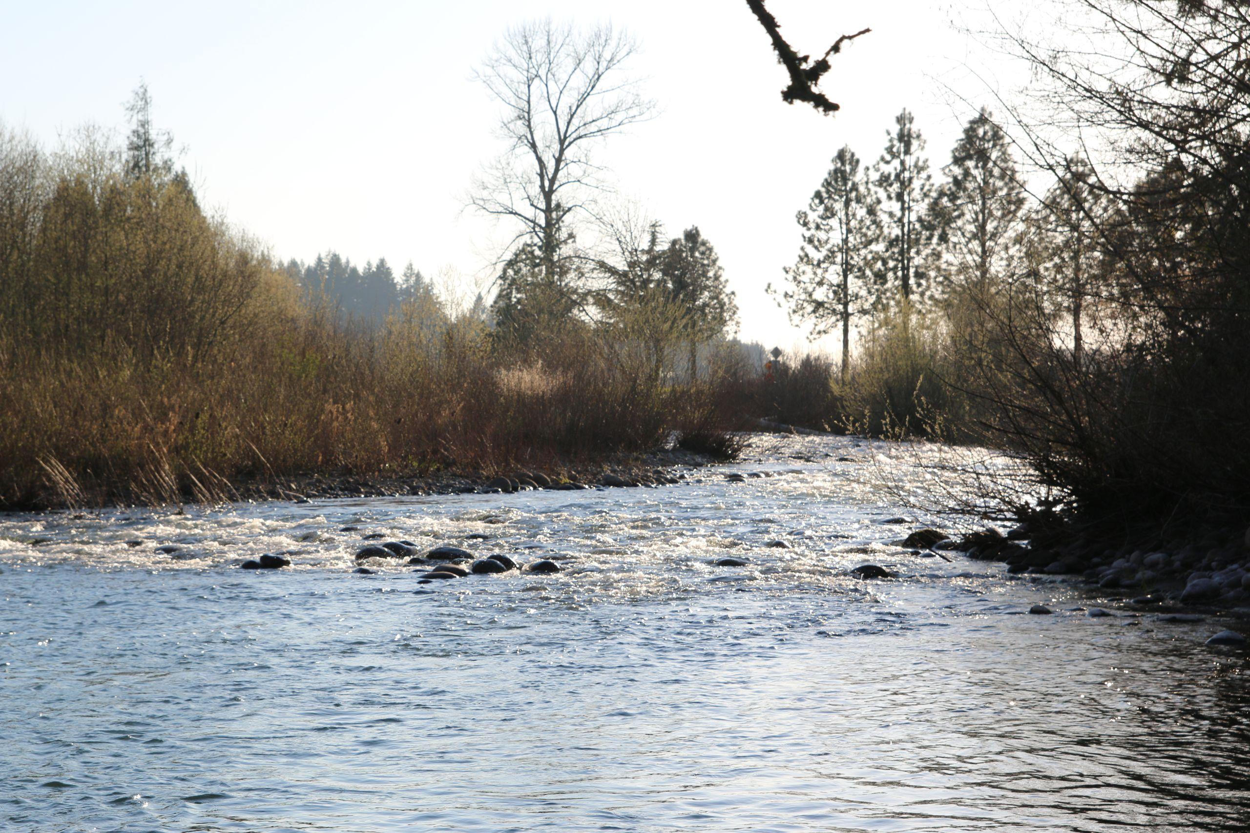 Crabtree Creek, Oregon