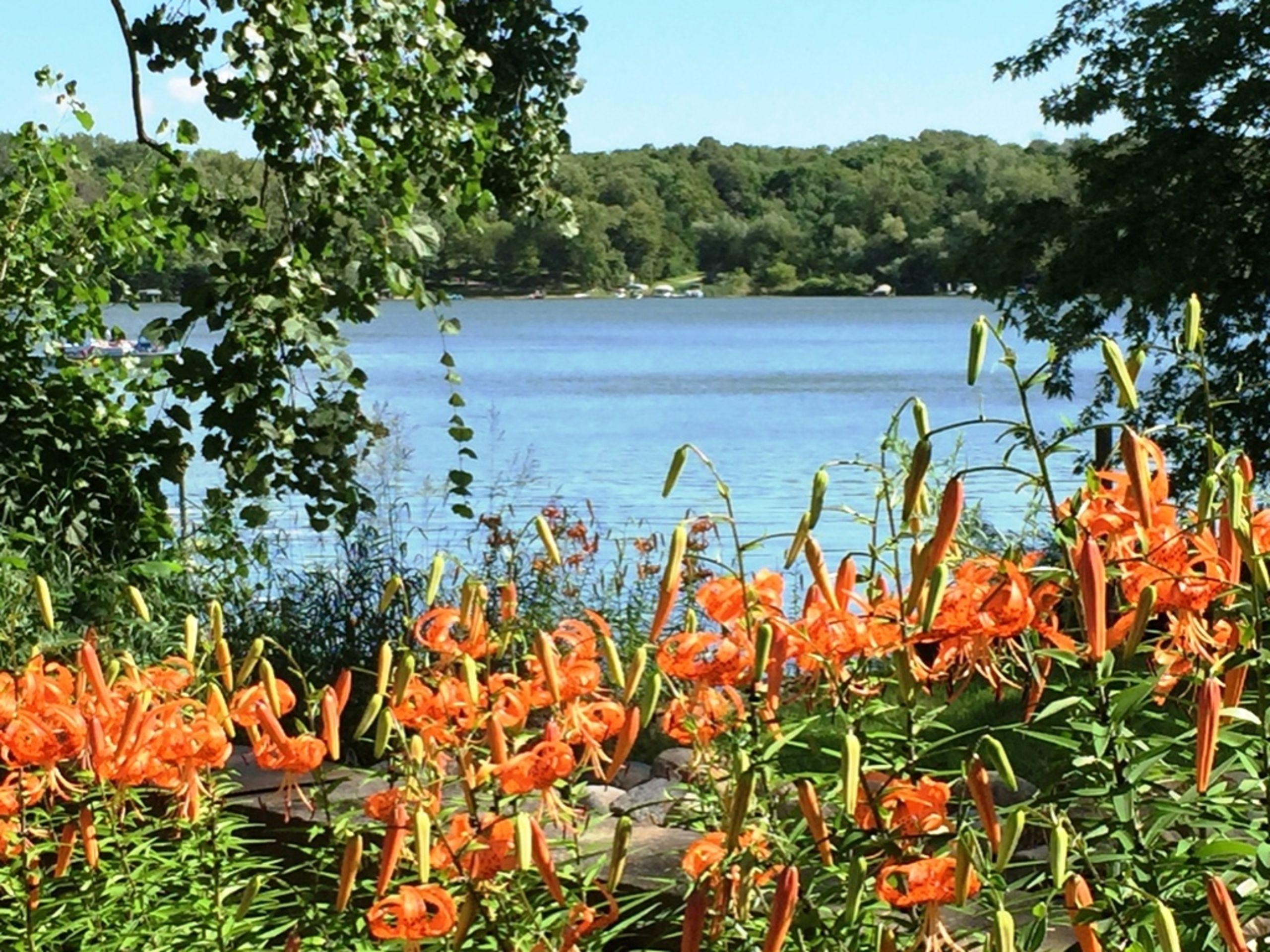 Bayview Flowers By Sauk Lake