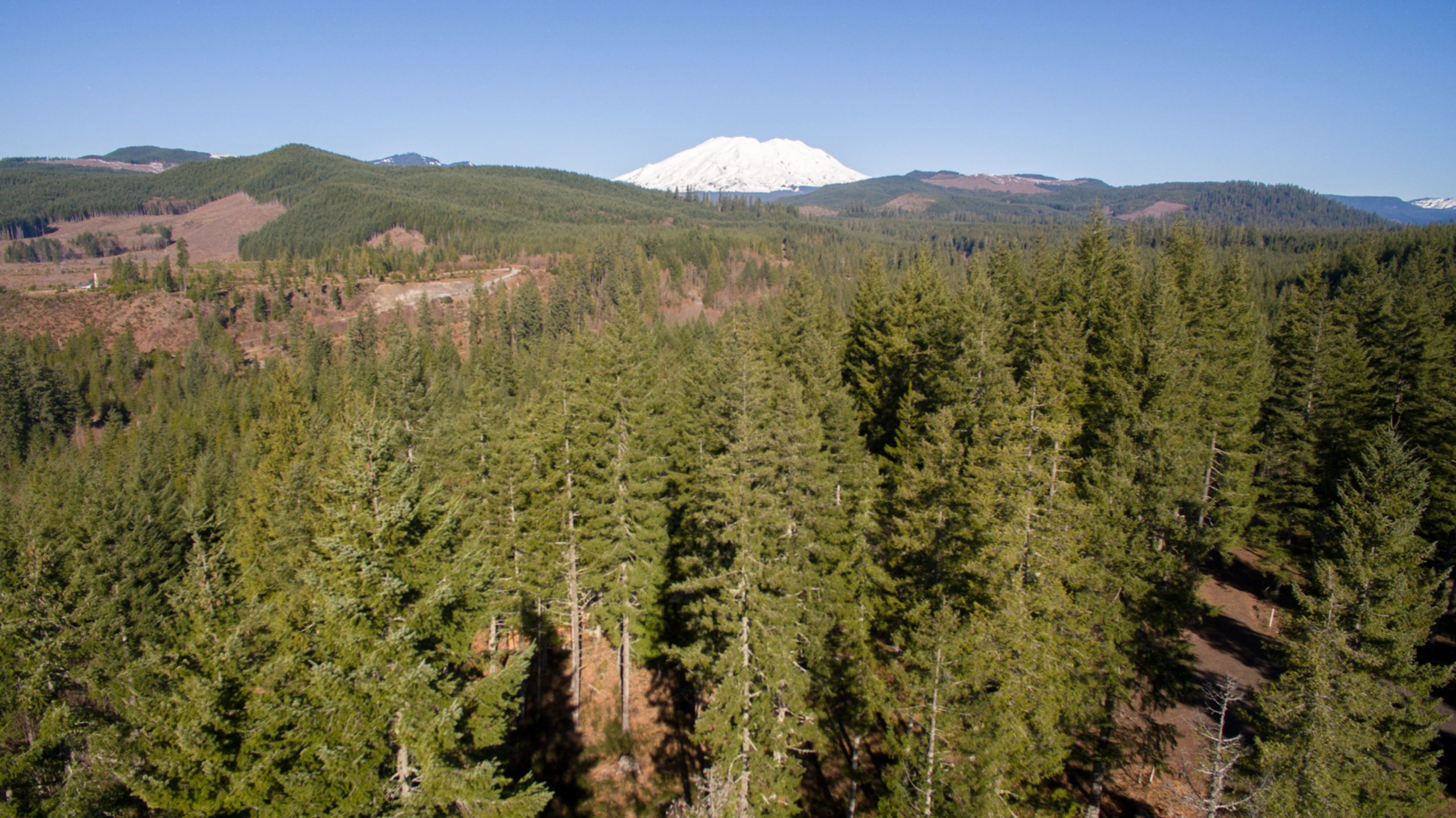 Majestic Mount Saint Helens