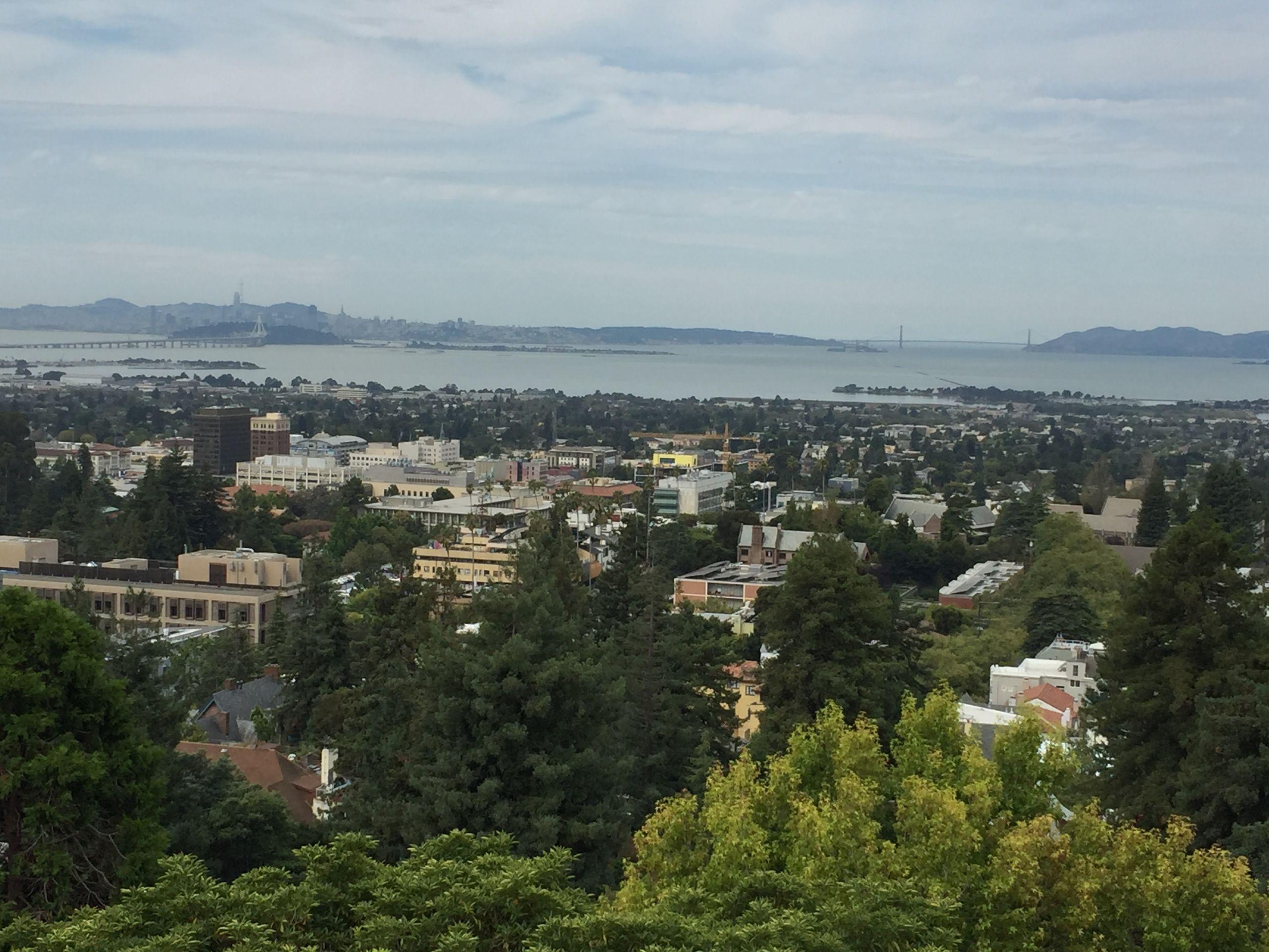 Sweeping Panoramic View of San Francisco Bay