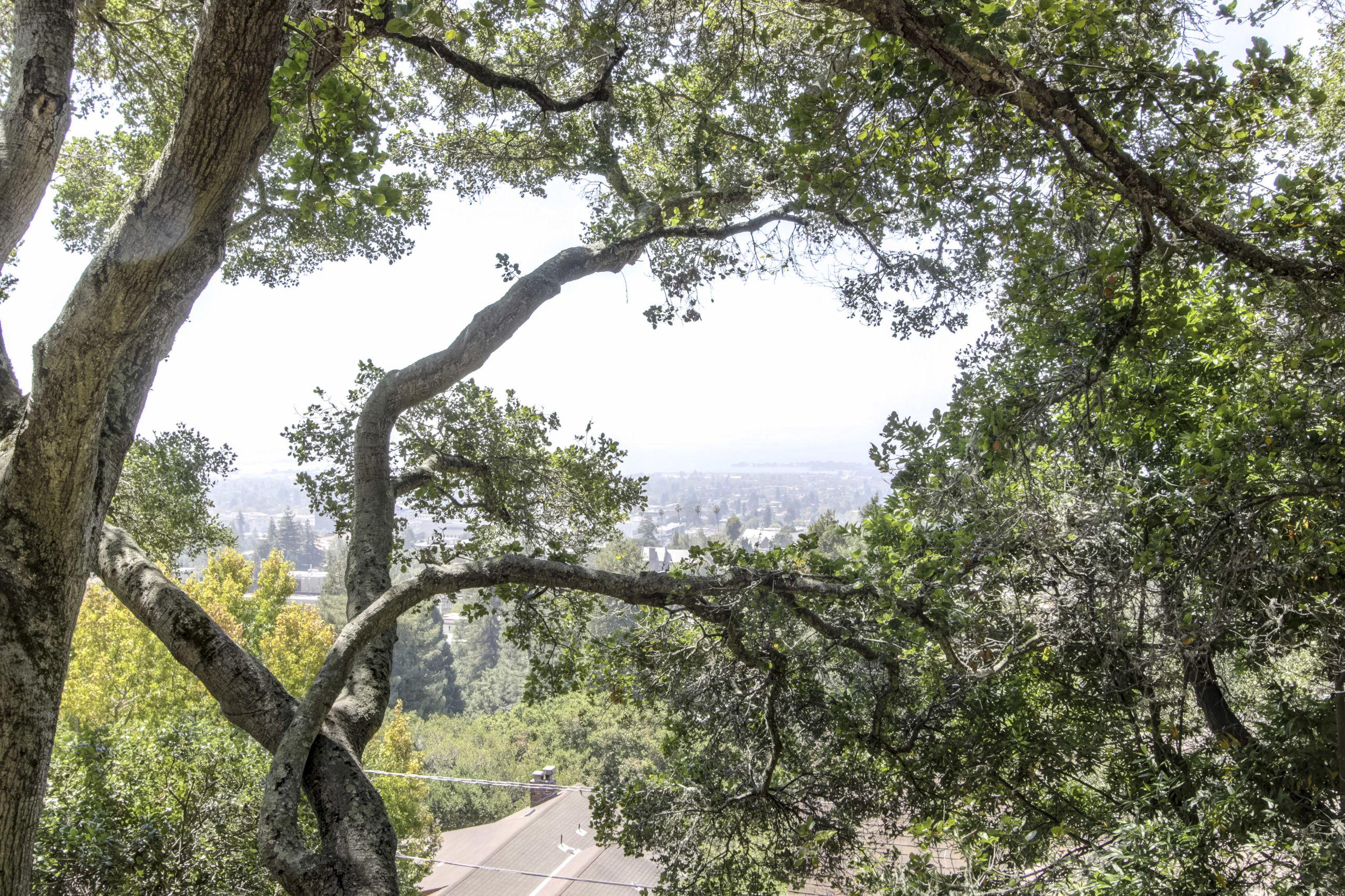 10 minutes walk to UC Berkeley