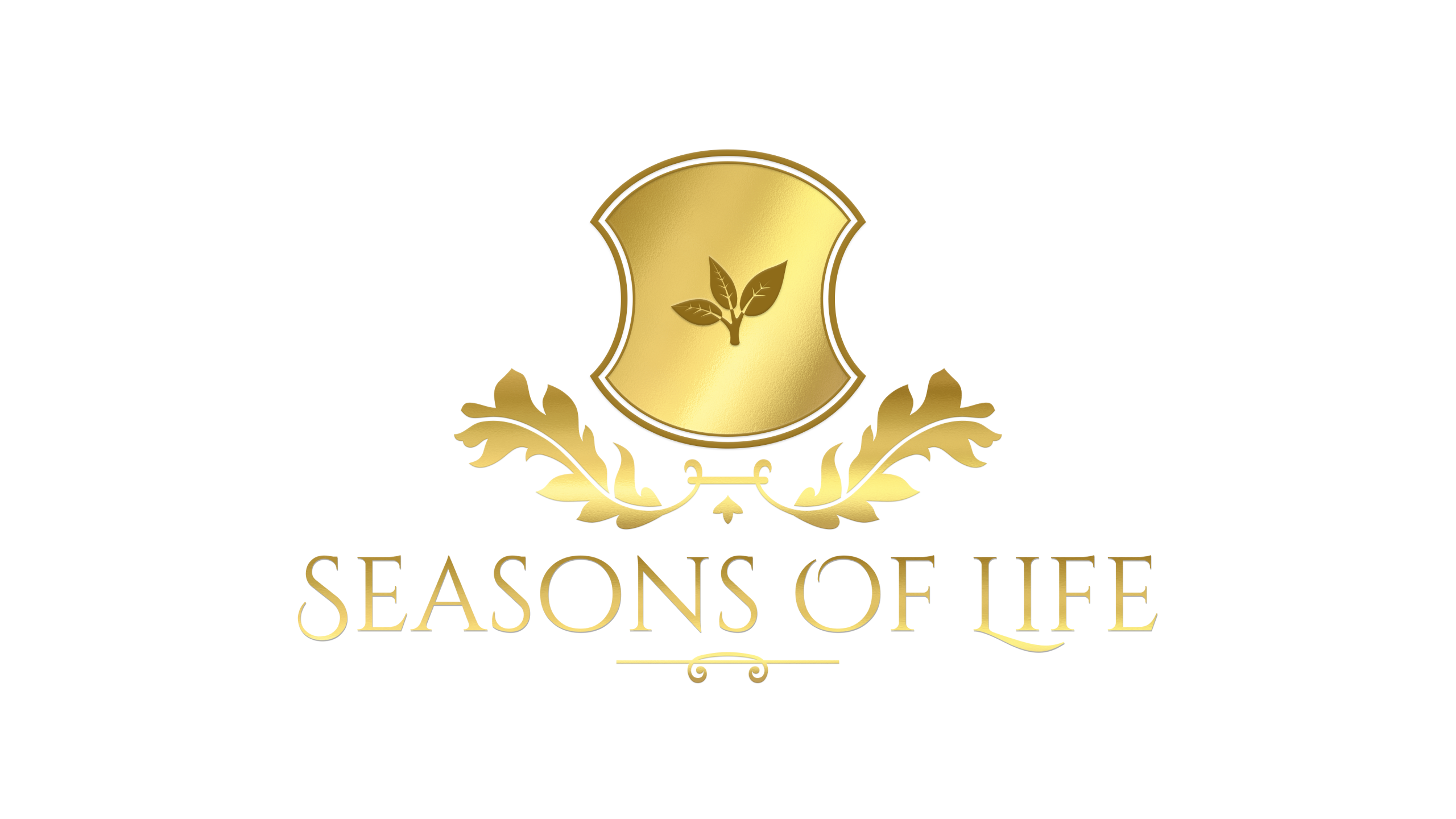 About Seasons Of Life