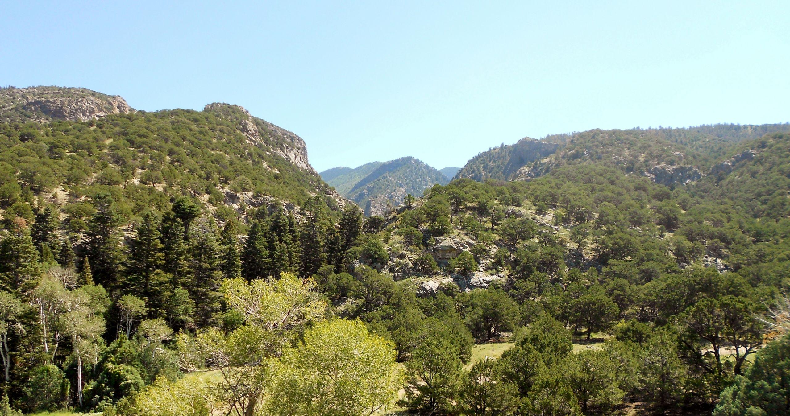 Forbes Park, Forbes Wagon Creek Ranch, & Sangre de Cristo Ranch