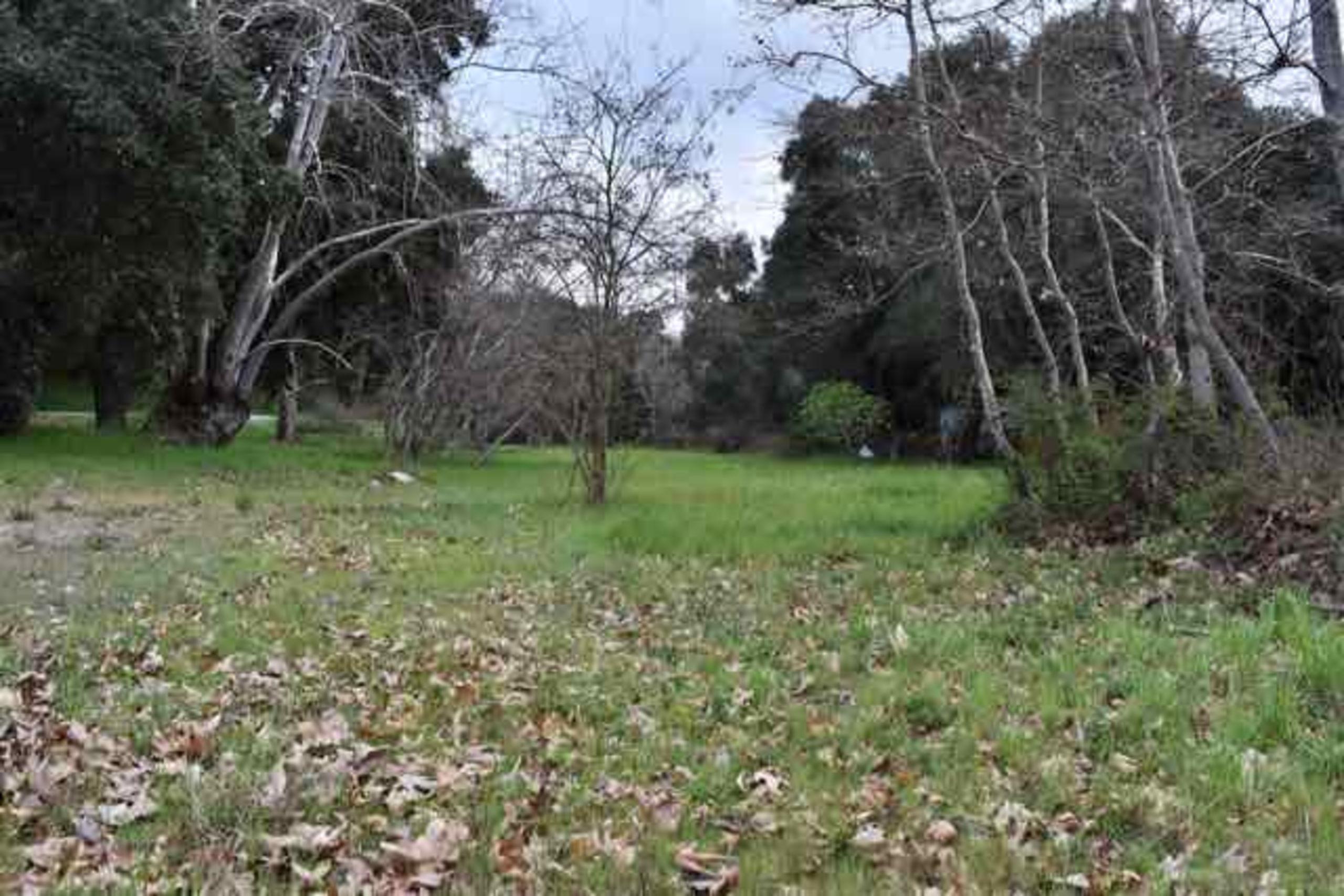 1 Acre Commercial/Residential lot In upper Carmel Valley