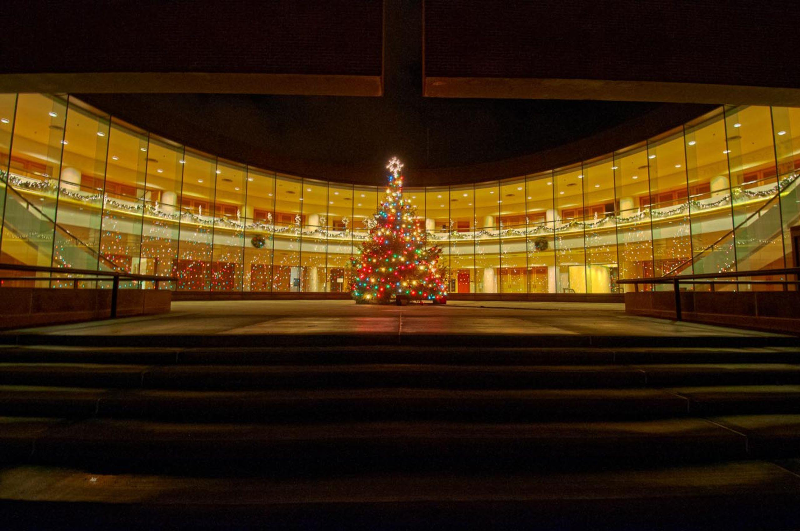 City Hall at Christmas