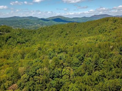 Barnhill Mountain | +- 217 Acres | Buncombe County NC
