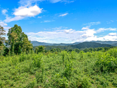FOR SALE! | 10 Acres Near Marshall | Outstanding Views!