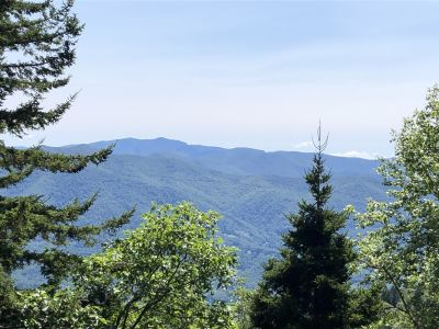 For Sale! Hi-Mountain Lot At 5500 Ft!