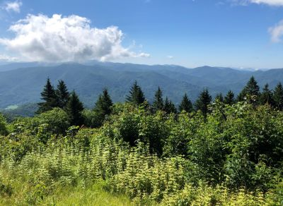 For Sale! Ready To Build Lot At 5,750 Ft Elevation!