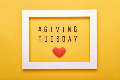Western North Carolina and Asheville Nonprofits to Support on Giving Tuesday