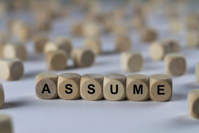 Challenging an Adage: The Value of Assumptions