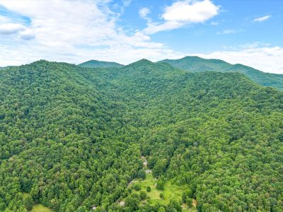 +-309 acres in Barnardsville | Privacy and Views