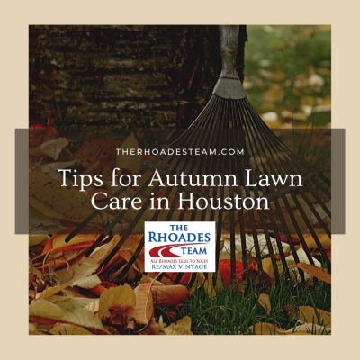 Tips for Autumn Lawn Care in Houston