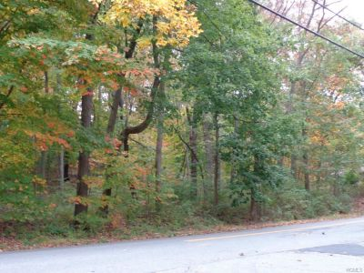 Briarcliff Manor Building Lot