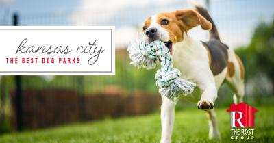 The Best Dog Parks in Kansas City