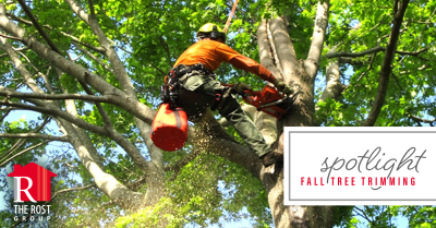 Fall Tree Trimming in Kansas City