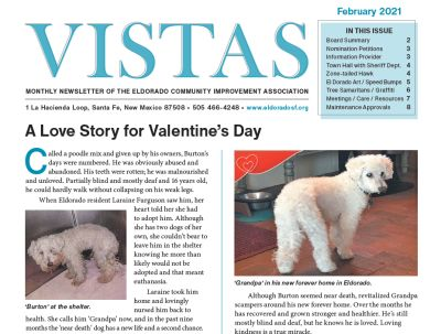 February Vistas Community Newsletter Now Available