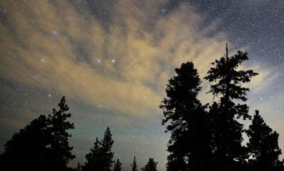 Meteor Shower in Your Backyard