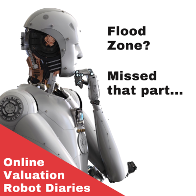 Pitfalls of Automated Valuation Models