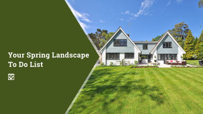 Your Spring Landscape To-Do List