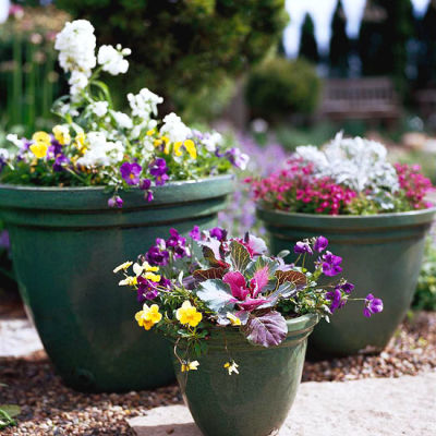 May Gardening Tips for the Midwest