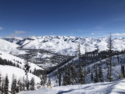 IN THE WEEDS | Sun Valley MLS Real Estate Market | 2020 over 2019